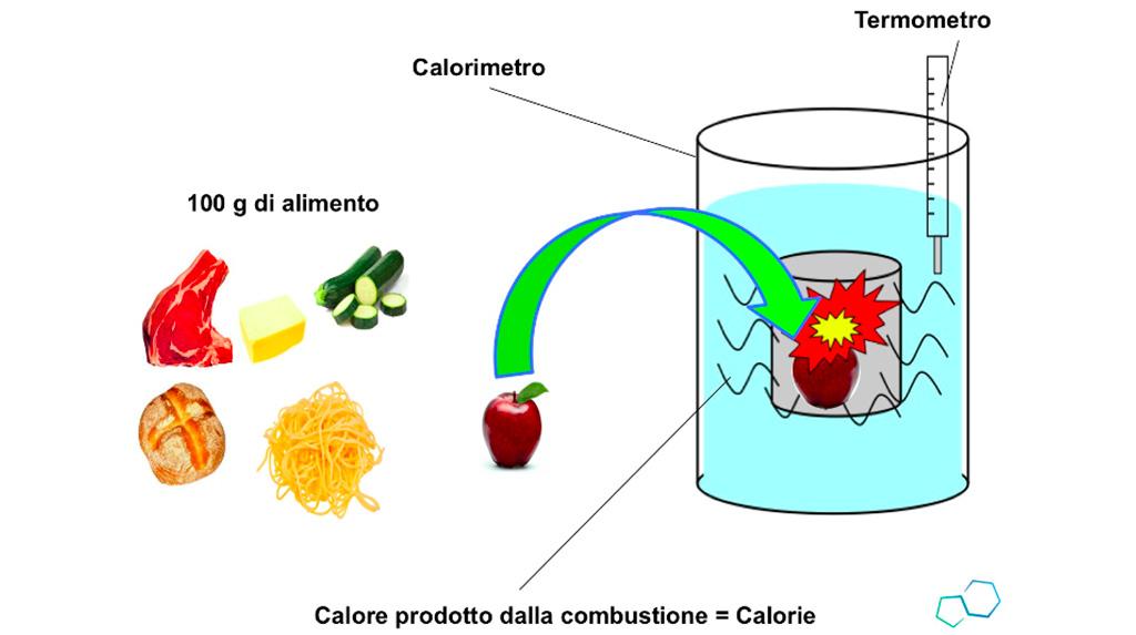 NutriEffect - L'Effetto Biologico degli Alimenti