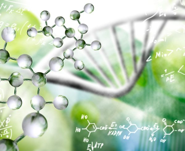 NutriEffect - In Biodinamica Veritas - Presentazione Podcast